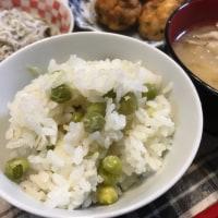 春の味 豆さんご飯