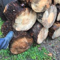 登り窯の薪割り助っ人   募集