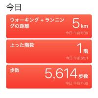 5/21  今日のパピ子といちご