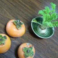 昨日いただいた柿と、大根の首の葉が成長した様子。