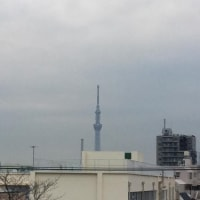 雨と雪の予報厳しい寒さになりますね。(^o^)(^o^)