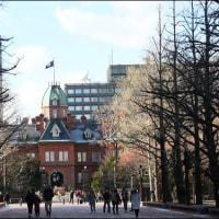 札幌 赤レンガ旧本庁舎 & 札幌駅  2016.11.25