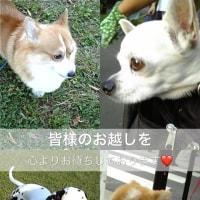 明日です!中野Sweet Rain 20:00〜🎵