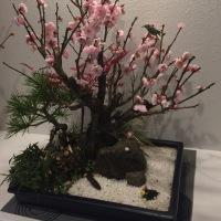 厚木市ヘアセット&エステBIENO~ビーノ☘️桜✨