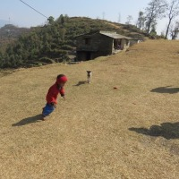 ネパール 5日目 トゥラコットハイキング