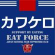 AFCアジアカップ / 日本1-0オーストラリア /大陸王者