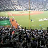 北海道日本ハムファイターズ優勝!