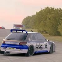 DiRT Rally ダートデイリーライブ(プジョー306 ドイツ)