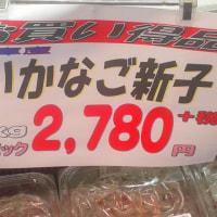 今日のいかなご( シンコ)の価格は?