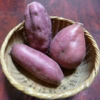 今日はサツマイモの日