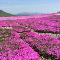 茶臼山高原。