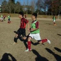 特体連スポーツ競技会(サッカーの部)