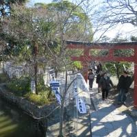 鎌倉江の島 七福神 ーー旗上弁財天ーー