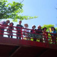 16 神ノ倉山(561m:安佐北区)登山  もみじ橋での写真を