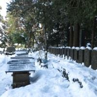 清々しい冬散歩
