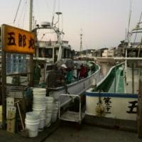2017年初釣り! 東京湾タチウオ