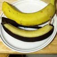 バナナのお知らせ