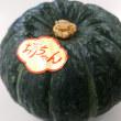 No.3950  坊ちゃんかぼちゃ