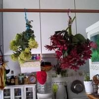 紫陽花とクレマチス