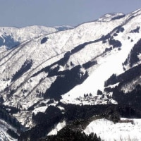 白山一里野温泉スキー場へ行こう