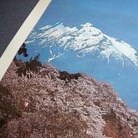 昭和54年1979年桜の弘前城さくらまつり いい日旅立ち 山口百恵