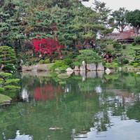 2016・日本庭園(縮景園)の紅葉 その6