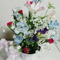 春が近い(^.^)