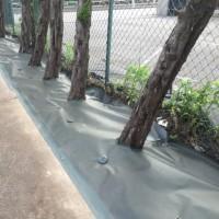 不織布の防草シートで雑草抑制