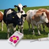 家畜のバイオメディカル パラメーター Biomedical parameters of livestock