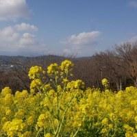 吾妻山 再び(2)