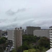 小雨が降っていますが間もなく雨が上がります。20度くらいまで気温は上がります。