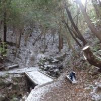 ほしだ園地~むろいけ園地~生駒山(長閑けし雪景色?)