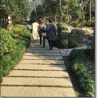 上海旅行2泊3日に行ってきました~その4、無錫編