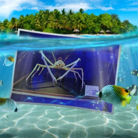 須磨海浜水族館の写真をフォトスケープでアニメ作成