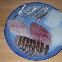 トウジンやダツとムツのにぎり寿司16.12.5