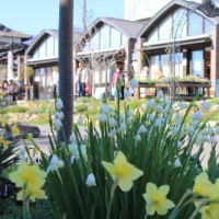早春の停車場ガーデン