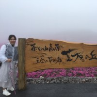 茶臼山 芝桜祭り