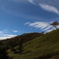 紅葉の富士見台
