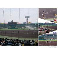 甲子園球場~夢工房~いずみホール(^^♪(6/24)