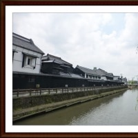 栃木市「蔵の街歩き」と「太平山の紫陽花」