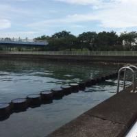臨海東雲アップルタワーの防災訓練&防災イベント警備❗️