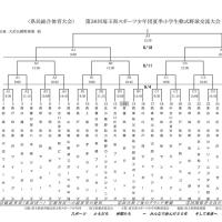 ●組合せ【第36回埼玉県夏季大会】