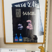 奇石博物館 FILE:7