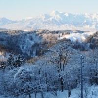 先日の雪景色