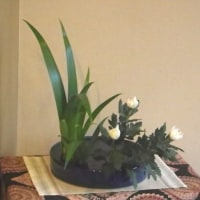 シャガの盛花様式