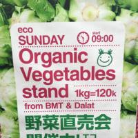 【ベトナムの無農薬野菜☆ 塩川実さんの「ニコニコ野菜」】
