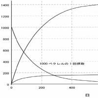 汚染土「濃度減衰まで170年」