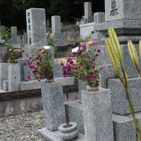 墓参り10月