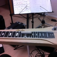 高齢者の車事故→外出→スチールギターの練習「ブルーカルア」コード展開