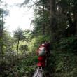 雨の燧裏林道
